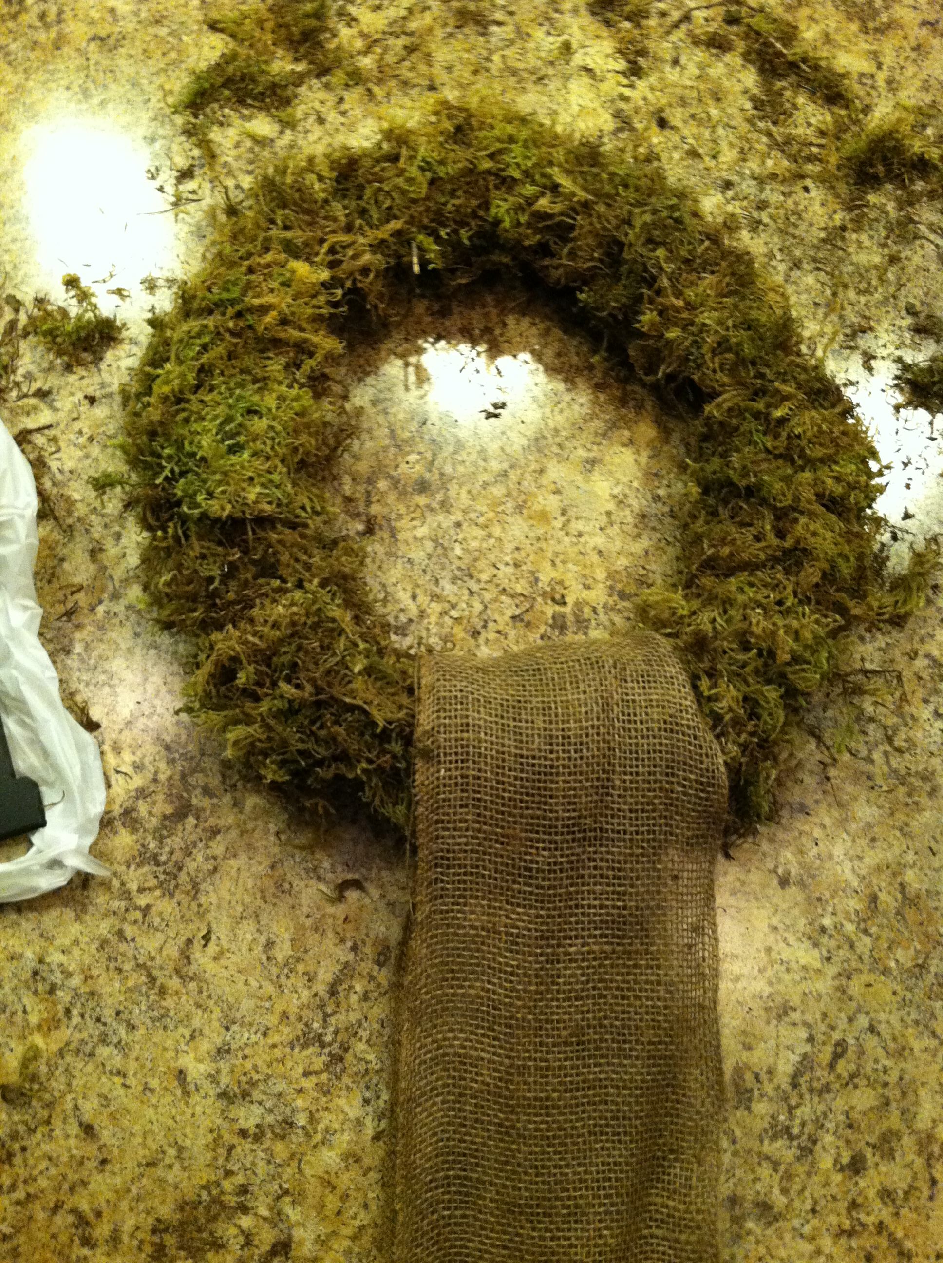 diy  monogrammed moss wreath